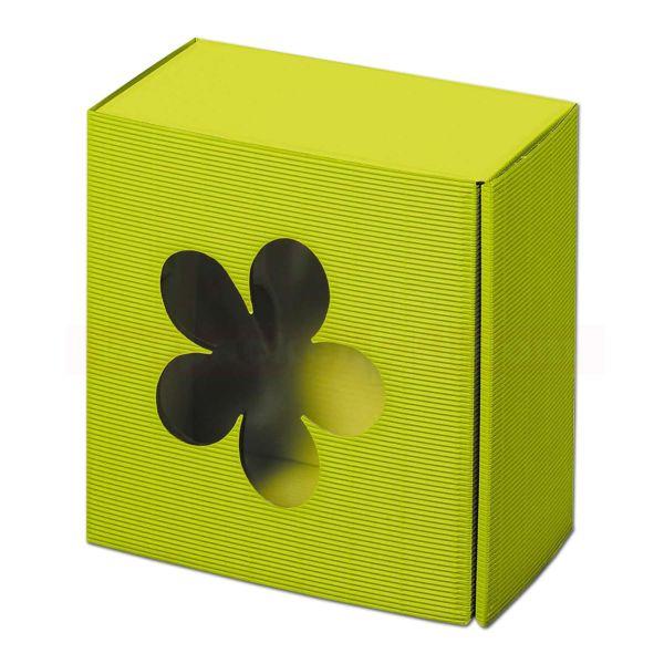 Geschenkkartons Blume - Allround Limette - mit Fenster
